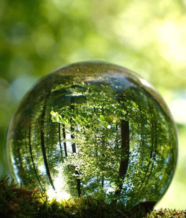 Reflection through a rain bubble